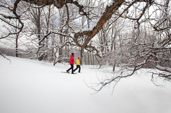 Barnard, Βερμόντ: Snowshoeing
