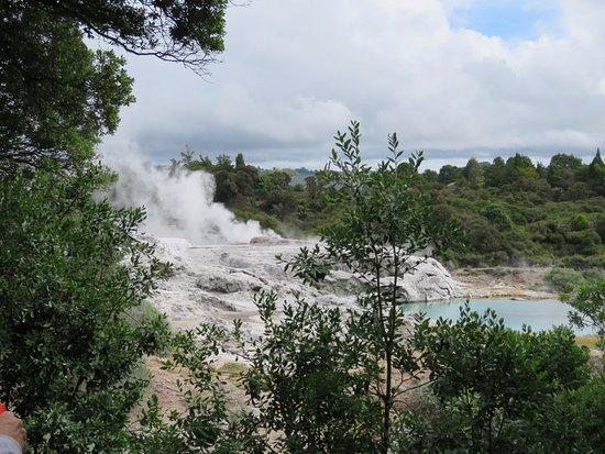 Mount Maunganui, New Zealand: Geothermal area in Rotorua
