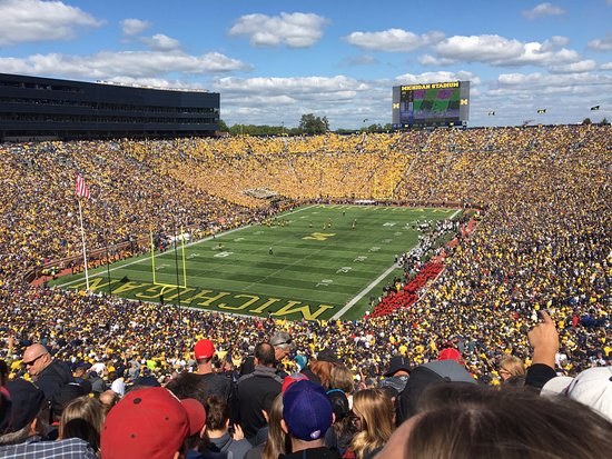 Ann Arbor, MI: Great view!