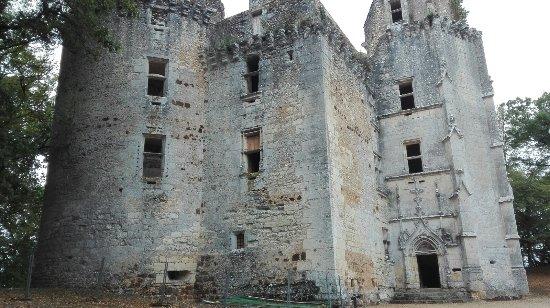 Rouffignac-Saint-Cernin-de-Reilhac, France: Aspecto del castillo