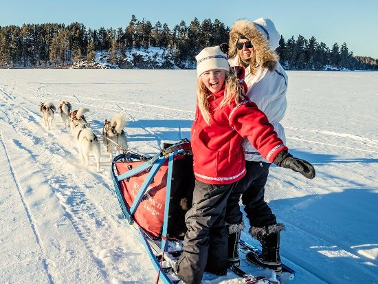 Wintergreen Dogsled Lodge : Dog sledding is great family fun for all ages!