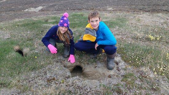 Arctic Watch Lodge: Abandoned artic fox hole