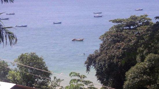 Castara Retreats: Castara Bay