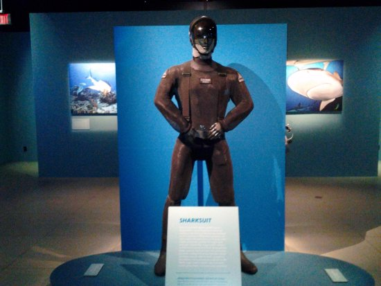 National Geographic Museum: Shark suit with a sleeve dangling on right side of display for you to try on