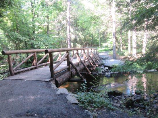 Dingmans Ferry, Pensilvanya: Man-made bridges