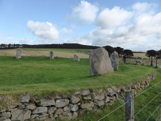 ‪East Aquhorthies Stone Circle‬