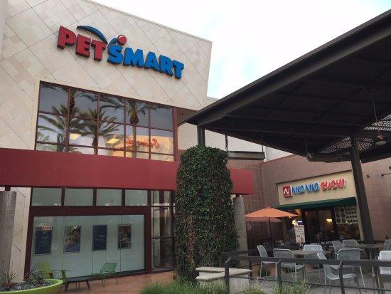 Cerritos, CA: 各種的店家