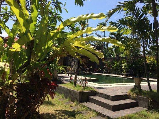 Mangga Bali Inn : photo2.jpg