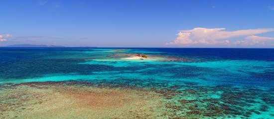 Coxen Hole, Honduras: Trips to Pigeon Cay, a unique paradise located in Roatan East End, we take you there!! Best Rate