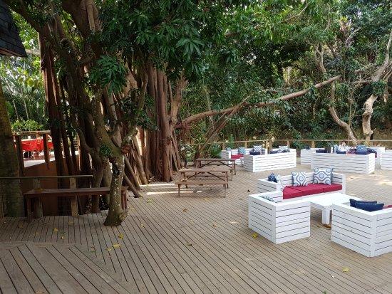 Zinkwazi Beach, Republika Południowej Afryki: The deck