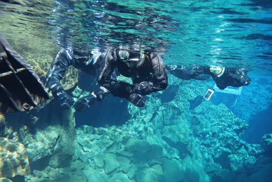 DIVE.IS: Snorkeling in dry suits