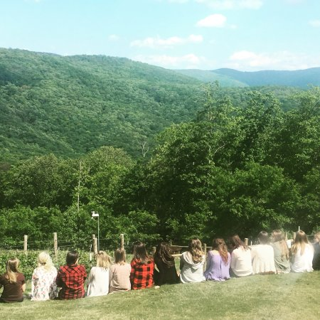 Jasper, GA: Take in the beautiful view from our lawn. Fainting Goat Vineyards was voted the best view in Ger
