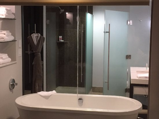 shower tub and water closet through glass wall deluxe water view rh tripadvisor ca