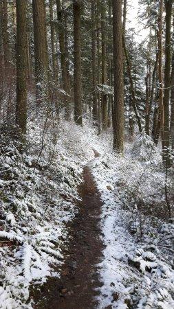 Saanich, Kanada: Winter hiking