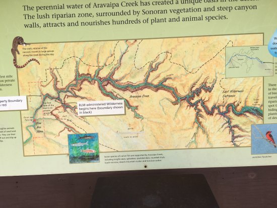 ‪‪Winkelman‬, ‪Arizona‬: Map of Aravaipa Canyon. You don't want to miss it.‬