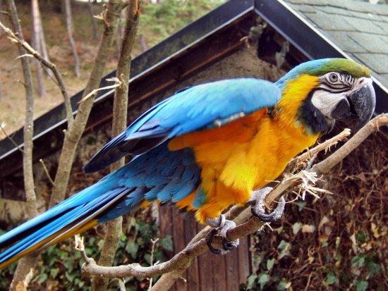 Tierpark Herborn