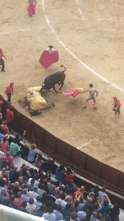 Plaza de Toros las Ventas: Picador was almost killed