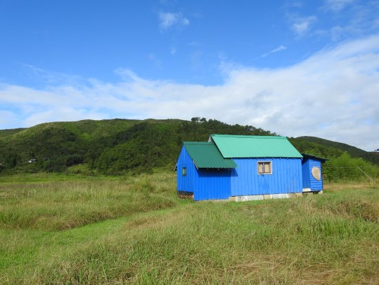 Meghalaya, อินเดีย: Cabin 1 at Maple Pine Farm