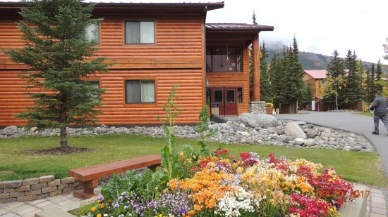 Denali Princess Wilderness Lodge: One of the buildings and the 'courtyard' area where the shops are located