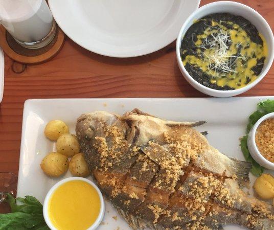 Lima Region, Peru: Chita al ajo crocante con risotto negro! Muy bueno