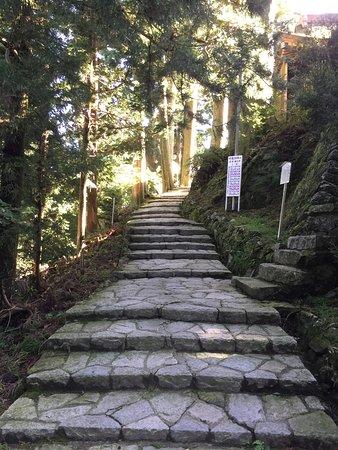 Toyokawa, Japan: photo7.jpg