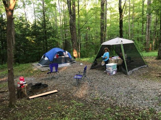 Cosby, TN: Campsite