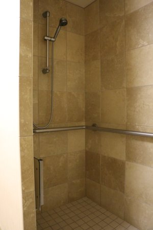 Hampton Inn Las Vegas/North Speedway: Shower stall with fold-down seat