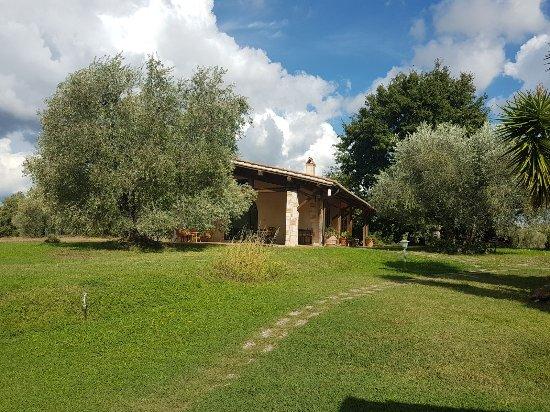 Montemerano, إيطاليا: IMG-20170919-WA0027_large.jpg