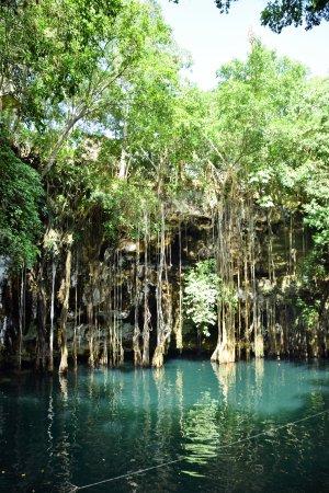 Cenote Yokdzonot August 2017