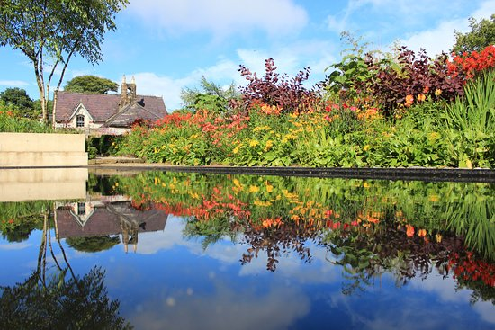 ‪‪Blessington‬, أيرلندا: The flection pool in June Blake's Garden, Photos by Dara Craul Photography‬