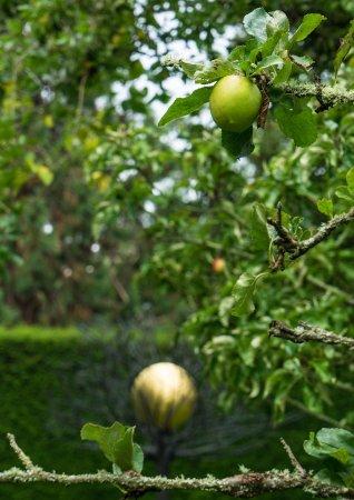 Наирн, UK: Formal garden