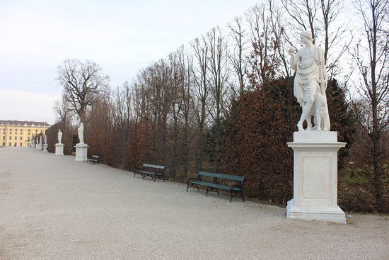 Schonbrunner Gardens: garden
