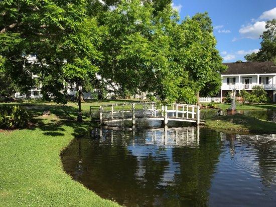Nottoway Plantation Resort: photo3.jpg