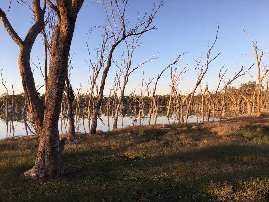 Barcaldine, Australië: photo0.jpg