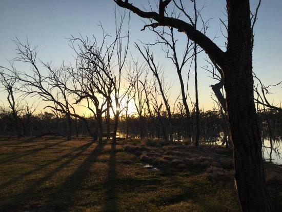 Barcaldine, Australië: photo1.jpg