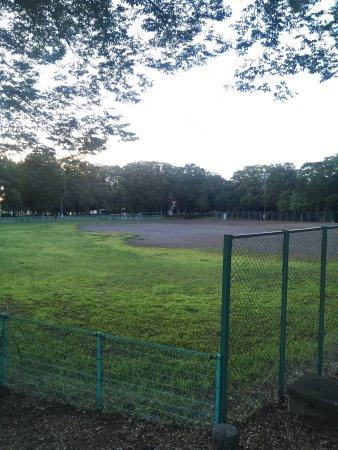 Akamidaikinrin Park
