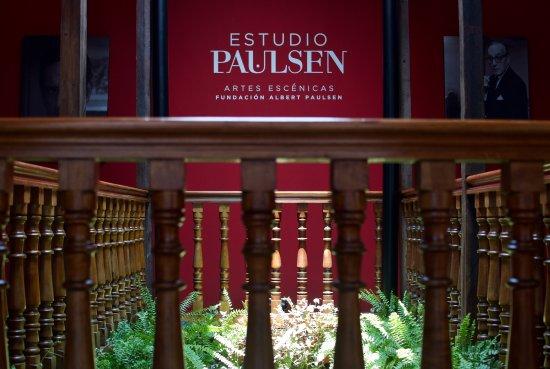 Estudio Paulsen de Artes Escenicas