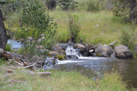 Thompson Trail (Forest Service Trail 629): Running water