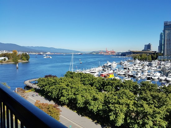 The Westin Bayshore, Vancouver: View from the room