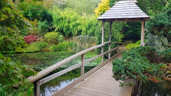 The Japanese Garden: 18/09/2017 - LW