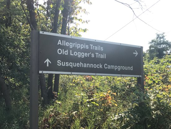 Allegrippis Trails