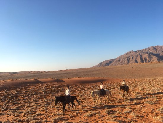 Wolwedans Dune Camp: Optional horseback riding in the Reserve