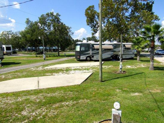 Waldo, FL: Pads