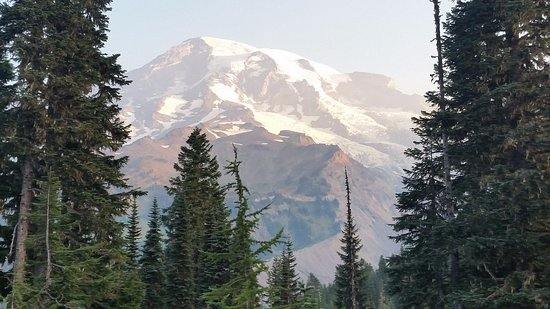 Paradise Inn at Mount Rainier : Just outside the Inn this is your view.
