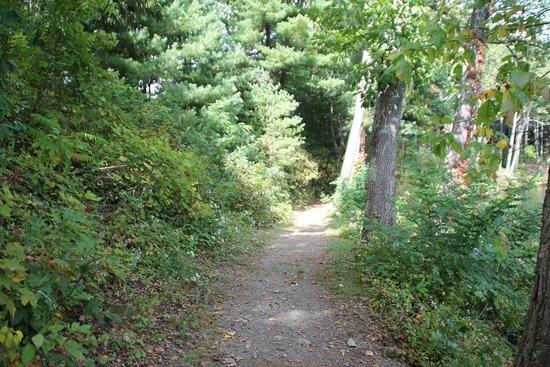 Pocono Palace Resort: Nature Trail