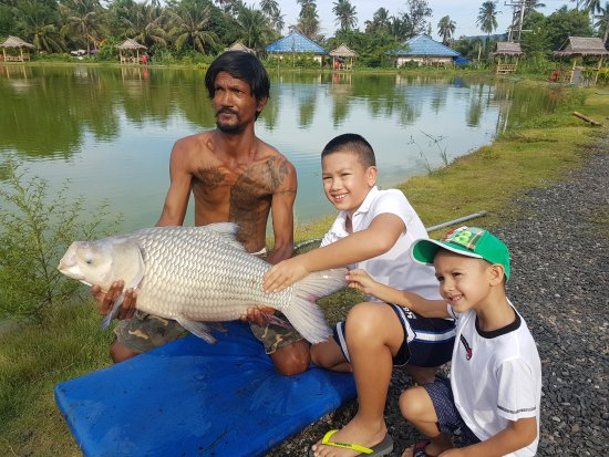 Rawai, Thailand: Start them young with a nice Siamese Carp