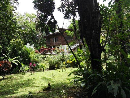 Ojochal, Costa Rica: IMG_20170915_121430_large.jpg