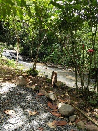 Ojochal, Costa Rica: IMG_20170915_121019_large.jpg