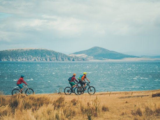 Tasmania, Australia: Mountain biking, Maria Island National Park. Photo by: Flow Mountain Bike