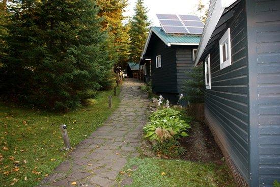 bartlett lodge algonquin provincial park canad. Black Bedroom Furniture Sets. Home Design Ideas
